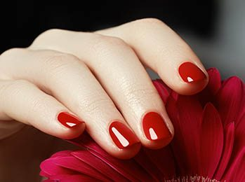 Beauty delicate hands with manicure close u