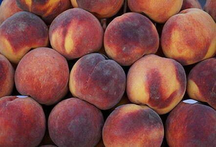 peach fuzz hair